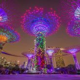 Singapore - Home of Crazy Rich Asians & More